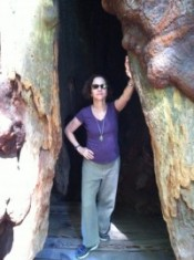 DB at Muir Woods